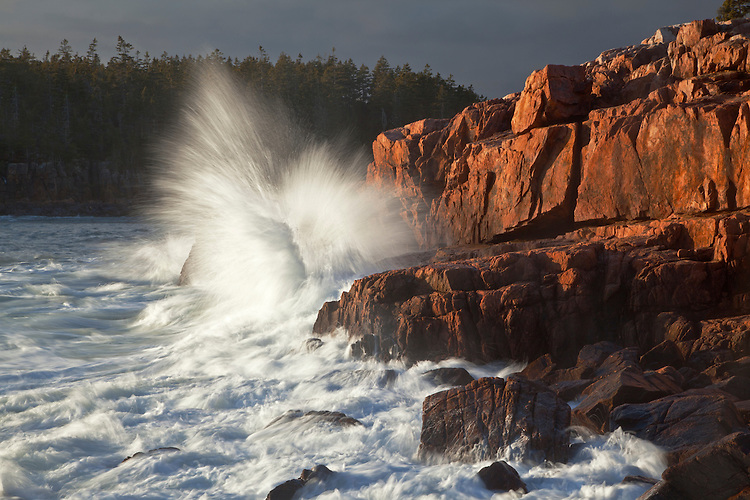 Waves crash into the granite shoreline along the Ship Harbor Trail on Mount Desert Island in Acadia National Park, Maine, USA