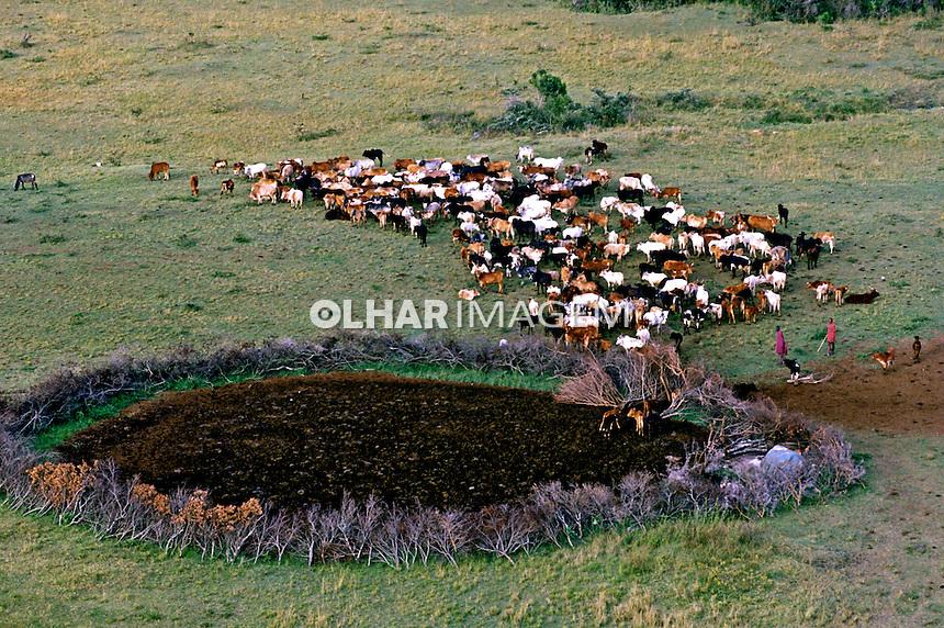 Criação de gado em savana africana. Quênia. 1995. Foto de João Caldas.