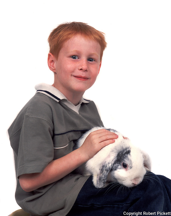 Young Boy holding Pet Rabbit, Lop Grey & White Colour, aged 7 years old, domestic, white background, cut out, studio, smiling