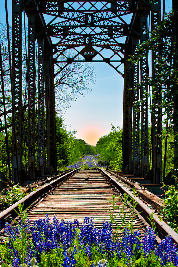 This old railroad bridge sits alongside a Texas country road unused and unseen by most. As the traffic nearby hurried to and from their destinations I sat and pondered the stories this old bridge could tell.