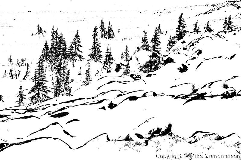 Tundra in winter<br /> Churchill <br /> Manitoba<br /> Canada