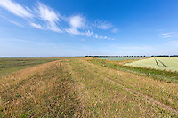 Large scale farming close to the sea - Lincolnshire, July