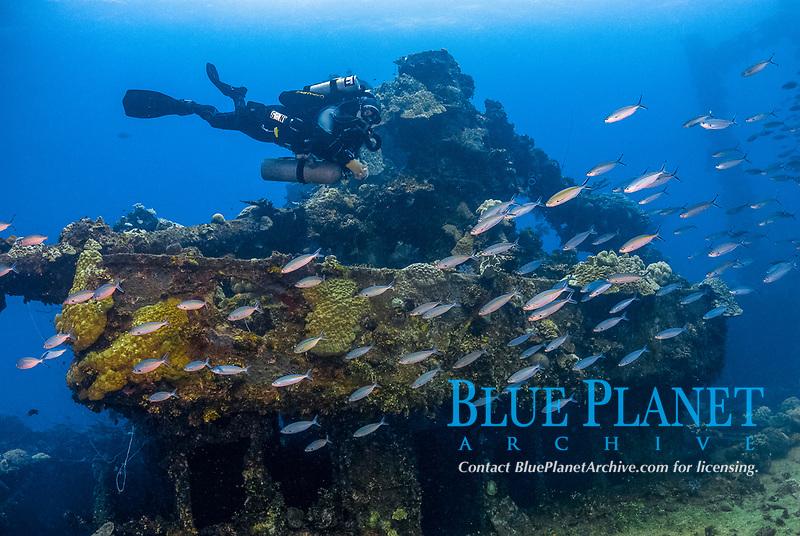 6 inch Gun, king posts, fish, Diver, rebreather, Fujikawa Maru in Truk Lagoon, Operation Hailstone, Wreck, WWII, Japanese shipwreck, Chuuk, Micronesia, Truk, Chuuk Lagoon, Pacific Ocean, MR
