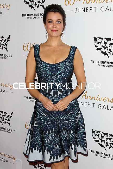 BEVERLY HILLS, CA, USA - MARCH 29: Bellamy Young at The Humane Society Of The United States 60th Anniversary Benefit Gala held at the Beverly Hilton Hotel on March 29, 2014 in Beverly Hills, California, United States. (Photo by Xavier Collin/Celebrity Monitor)