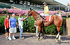 He's Got Talent winning at Delaware Park on 8/5/14