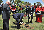 AUSTRALIA, Canberra : Mayor of Villers- Bretonneux Patrick Simon (L) French President Francois Hollande (C) and Australian Prime Minister Tony Abbott (R) plant a tree using soil from Villers- Bretonneux  at the Austraslian War Memorial grounds, Canberra on November 19, 2014. Hollande is on a two-day state visit to Australia following the G20 Summit over the weekend. AFP PHOTO / MARK GRAHAM