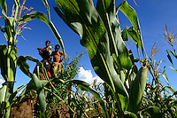 Zambia Chiawa, children in maize field which are attacked often by wild animals from the Lower Zambezi National Park / SAMBIA Chiawa, Doerfer im Game Reserve Area des Lower Zambezi Nationalpark, die Dorfbewohner und ihre Felder werden staendig von Wildtieren wie Elefanten, Nilpferden etc attackiert, Kinder im Maisfeld