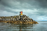 USA, Alaska, Homer, China Poot Bay, Kachemak Bay, birds surrounding the jetty near the marina at Homer Spit