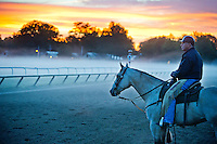Trainer D. Wayne Lukas watches horses exercise in the morning mist and fog on the Oklahoma Training Track at Saratoga Race Course in Saratoga Springs, New York on August 6, 2013.