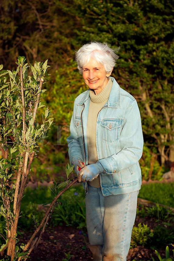 Portrait of a senior woman working in the garden.