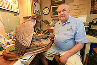 NWA Democrat-Gazette/FLIP PUTTHOFF<br />Charles Wolfe of Fayetteville shows one of his woodcarvings, a red-tailed hawk. It's among the dozens of bird species he's carved from blocks of wood. Wolfe took six years to complete the hawk carving, seen here on Aug. 11 2017, and just recently finished it.