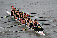 Crew: 251 Warwick, University of, Boat Club C<br /> <br /> Women's Head of the River (WeHoRR) 2017<br /> <br /> To purchase this photo, or to see pricing information for Prints and Downloads, click the blue 'Add to Cart' button at the top-right of the page.