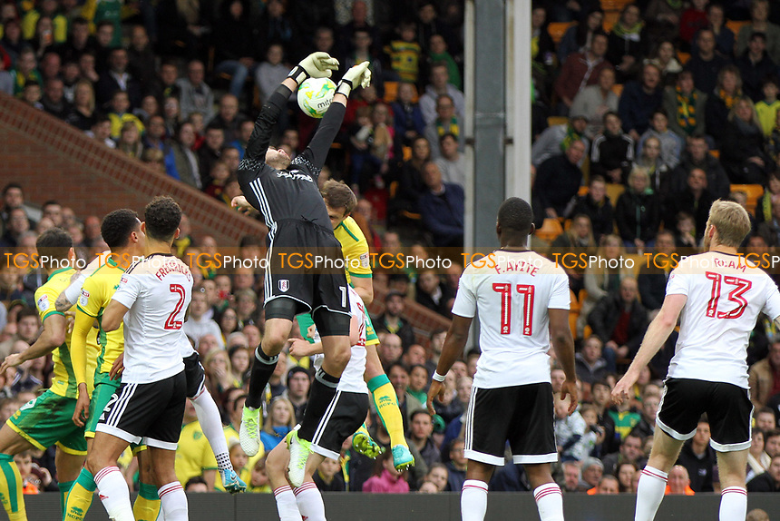 Marcus Bettinelli of Fulham fails to catch the aerial ball during Norwich City vs Fulham, Sky Bet EFL Championship Football at Carrow Road on 14th April 2017
