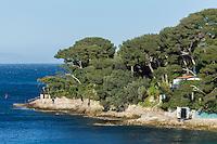 Europe/France/Provence-Alpes-Côte d'Azur/Alpes-Maritimes/Saint-Jean-Cap-Ferrat : La Pointe de Saint Hospice, depuis la Plage de Paloma Beach //  Europe, France, Provence-Alpes-Côte d'Azur, Alpes-Maritimes, Saint-Jean-Cap-Ferrat: Pointe de Saint Hospice, since  Paloma Beach