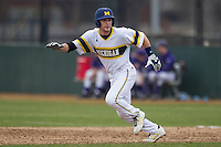 Michigan Wolverines pinch runner Trey Miller (8) leads off first base during the NCAA baseball game against the Washington Huskies on February 16, 2014 at Bobcat Ballpark in San Marcos, Texas. The game went eight innings, before travel curfew ended the contest in a 7-7 tie. (Andrew Woolley/Four Seam Images)