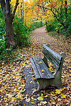 A Walking Path And Park Bench Amid The Brilliant Colors Of A Rainy Autumn Day, Sharon Woods, Southwestern Ohio