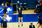 PENSACOLA, FL - DECEMBER 09: Payton Nutter (5) of Concordia University, St. Paul sets the ball during the Division II Women's Volleyball Championship held at UWF Field House on December 9, 2017 in Pensacola, Florida. (Photo by Timothy Nwachukwu/NCAA Photos via Getty Images)