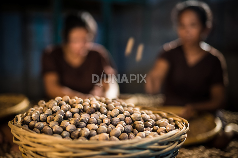 Women sort nutmeg at a warehouse on Banda Neira. The once precious spice that drove the first circumnavigation of the globe declined sharply in value once plantations were established outside Banda.