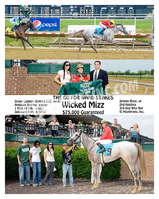 Wicked Mizz winning at The Go for Wand Stakes at Delaware Park  on 6/9/12