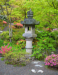 Seattle, WA: Stone lantern on a path in Seattle Japanese Garden in the Washington Park Arboretum