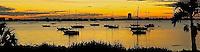 CDT- Selby Gardens & Sarasota Bay Sunset, Sarasota FL 12 13