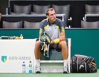 12-02-13, Tennis, Rotterdam, ABNAMROWTT, Thiemo de Bakker