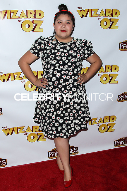 "HOLLYWOOD, CA - SEPTEMBER 18: ""The Wizard Of Oz"" Opening Night held at the Pantages Theatre on September 18, 2013 in Hollywood, California. (Photo by Xavier Collin/Celebrity Monitor)"