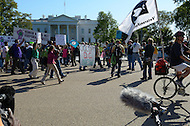 "October 6, 2011  (Washington, DC)  Protesters march past the White House toward the U.S. Chamber of Commerce across Lafayette Park. Hundreds of people from around the country descended on Washington for ""Occupy DC"", a movement that has spread from New York City's ""Occupy Wall Street""    (Photo by Don Baxter/Media Images International)"