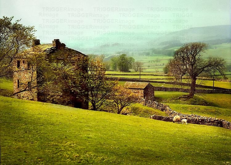 A stone cottage with rolling farm fields