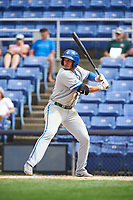 Hartford Yard Goats left fielder Dillon Thomas (25) at bat during a game against the Binghamton Rumble Ponies on July 9, 2017 at NYSEG Stadium in Binghamton, New York.  Hartford defeated Binghamton 7-3.  (Mike Janes/Four Seam Images)