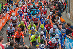 The peloton with Julian Alaphilippe (FRA) Deceuninck-Quick Step climb  Mur de Huy on the 2nd ascent during the 2019 La Fl&egrave;che Wallonne running 195km from Ans to Mur de Huy, Belgium. 24th April 2019. Picture: Pim Nijland | Peloton Photos/Cyclefile<br /> <br /> All photos usage must carry mandatory copyright credit (Peloton Photos/Cyclefile | Pim Nijland)