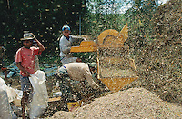 Philippines. Negros Island. Province of Negros Occidental, located in the  Western Visayas region. Barangay (village) Capanuyan. Men at work with a trashing paddy machine. Organic rice. Sustainable agriculture.  © 1999 Didier Ruef