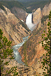 Lower Falls and Yellowstone's Grand Canyon on Uncle Toms Trail at Yellowstone National Park, Wyoming.