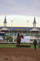 May 1, 2014: California Chrome prepares for the Kentucky Derby at Churchill Downs in Louisville, KY. Zoe Metz/ESW/CSM