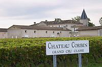 Vineyard. Winery building. Chateau Corbin. Saint Emilion, Bordeaux, France