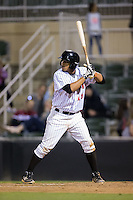 Cleuluis Rondon (16) of the Kannapolis Intimidators at bat against the Hagerstown Suns at Kannapolis Intimidators Stadium on May 6, 2016 in Kannapolis, North Carolina.  The Intimidators defeated the Suns 5-3.  (Brian Westerholt/Four Seam Images)