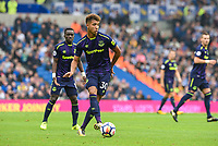 Mason Holgate of Everton (30) during the Premier League match between Brighton and Hove Albion and Everton at the American Express Community Stadium, Brighton and Hove, England on 15 October 2017. Photo by Edward Thomas / PRiME Media Images.