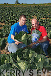 Theres no mistaking the taste of Clifford Brothers Cabbages. Their unique flavour.comes from Ardferts rich fertile earth, and the way Noel Clifford grows them..And every time you taste Clifford Brothers Cabbages, you can tell!