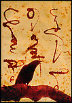 A black bird with hand written inscription