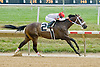 King Town winning at Delaware Park on 7/28/12