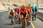 The peloton with CCC Team on the front during Stage 4 of 10th Tour of Oman 2019, running 131km from Yiti (Al Sifah) to Oman Convention and Exhibition Centre, Oman. 19th February 2019.<br /> Picture: ASO/K&aring;re Dehlie Thorstad | Cyclefile<br /> All photos usage must carry mandatory copyright credit (&copy; Cyclefile | ASO/K&aring;re Dehlie Thorstad)