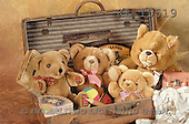Interlitho, Alberto, CUTE ANIMALS, teddies, photos, teddies, suitcase(KL15519,#AC#)
