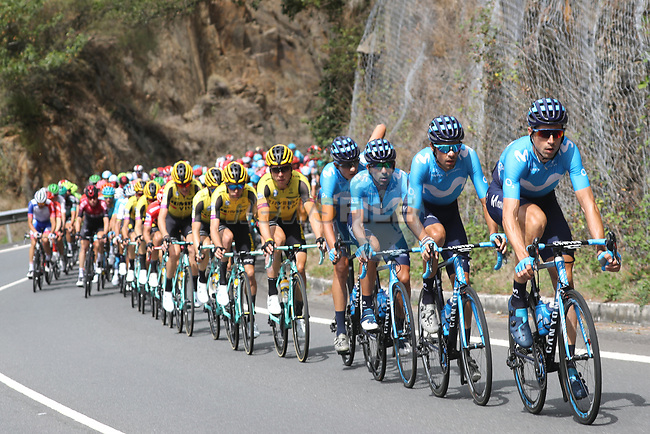 Movistar Team and Team Jumbo-Visma control the peloton during Stage 15 of La Vuelta 2019  running 154.4km from Tineo to Santuario del Acebo, Spain. 8th September 2019.<br /> Picture: Luis Angel Gomez/Photogomezsport | Cyclefile<br /> <br /> All photos usage must carry mandatory copyright credit (© Cyclefile | Luis Angel Gomez/Photogomezsport)
