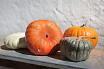 Pumpkins from market garden, Babylonstoren estate, Western Cape, South Africa, February 2013