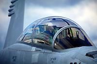 McDonnell Douglas F/A  F18EF Super Hornet
