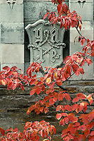 Yale seal with dogwood leaves, Sterling library, New Haven, CT