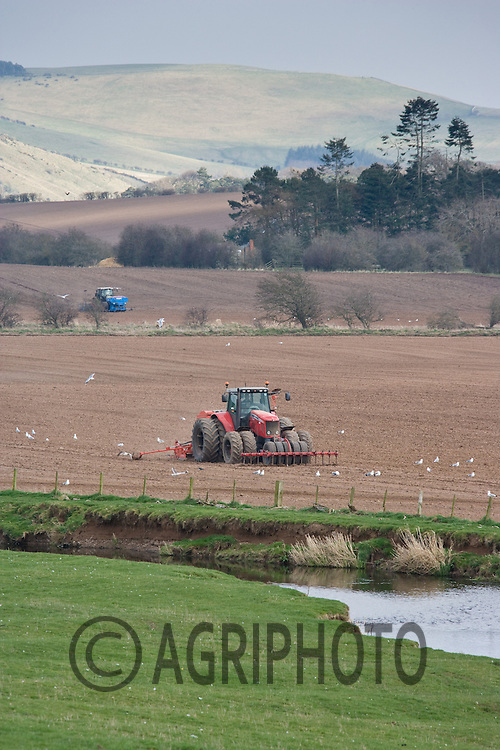 29.3.2011 Massey Ferguson tractor drilling Spring cereals in the Scottish Borders.©Tim Scrivener 07850 303986.