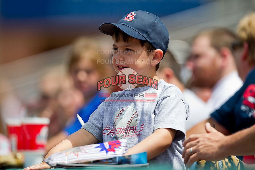 A young Springfield Cardinals fan takes in the sights during a game between the Arkansas Travelers and the Springfield Cardinals at Hammons Field on May 8, 2012 in Springfield, Missouri. (David Welker/ Four Seam Images)