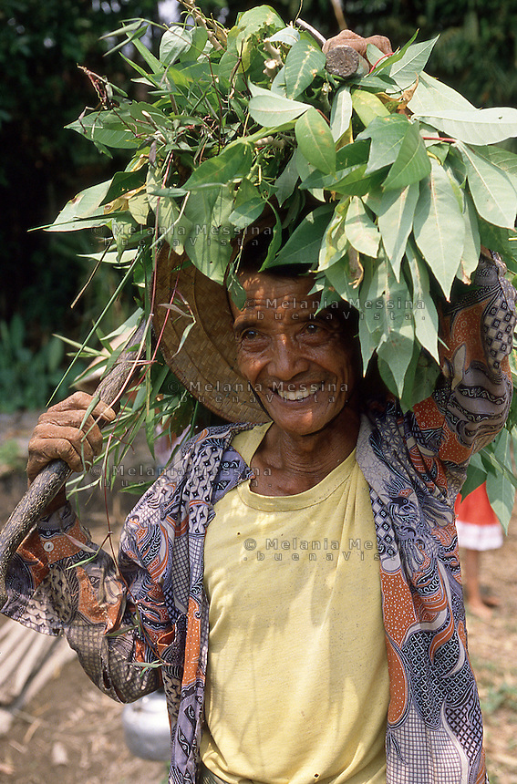 An Indonesian peasant in Java.<br />