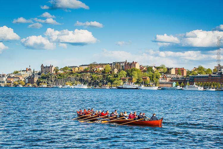 Roddare tränar i roddbåt på Riddarfjärden Stockholm med Mariaberget på södermalm i bakgrunden